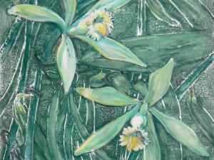 Vanilla orchid III