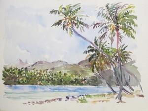 Cocotiers devant Motu Mahare